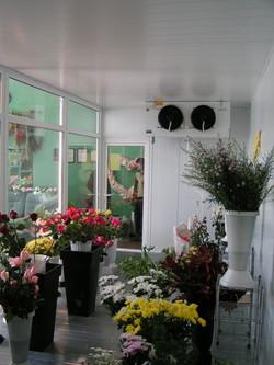 цветочная камера