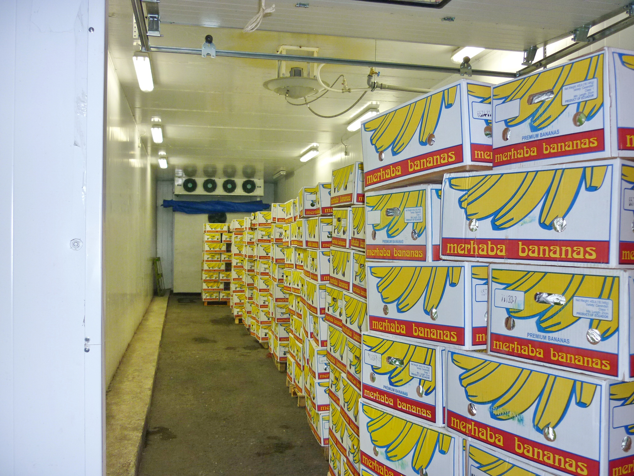 камера газации бананов