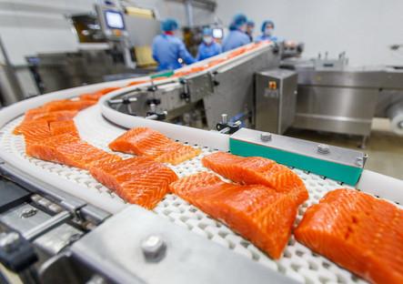 рыбное производство