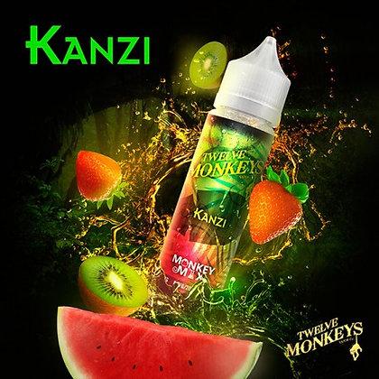 Twelve Monkeys - Kanzi