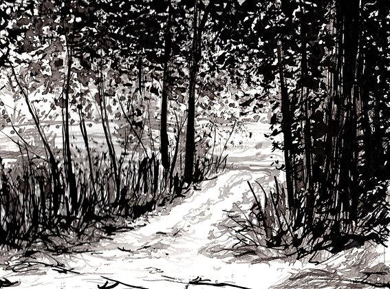 Driveway 1