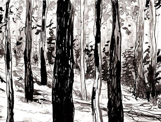 Side Woods