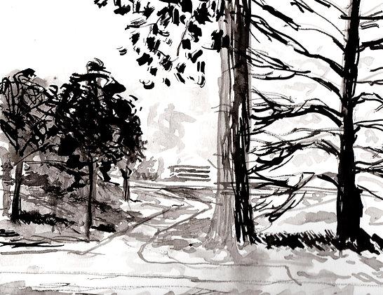 Dunn Meadow