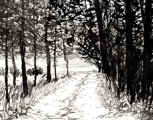 Driveway 2