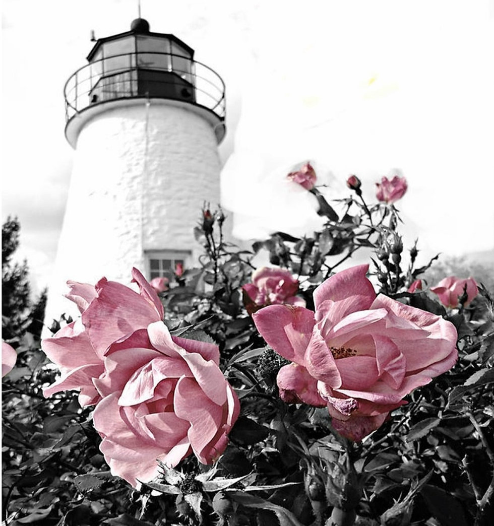 Lighthouse%252520with%252520Roses_edited