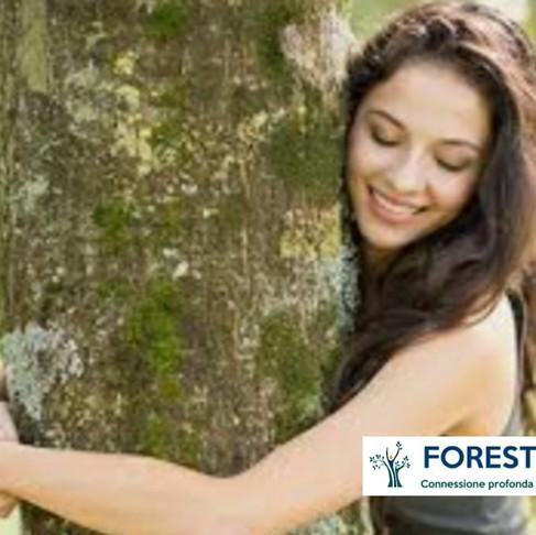 Abbraccio degli alberi e percorsi sensoriali: sarà un'estate di immersione nella natura