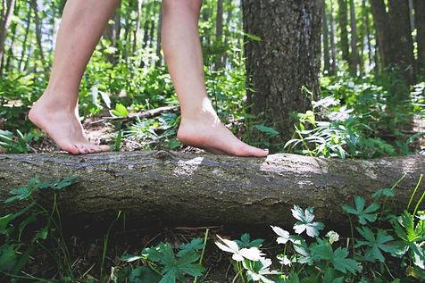 piedi nudi bosco.jpg