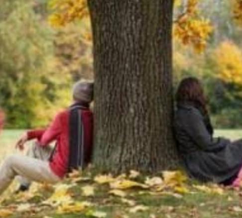 """L'Islanda abbraccia gli alberi: """"Mandate in quarantena la solitudine"""""""