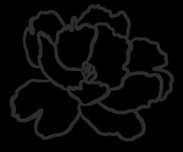 BLACK_FLOWER-06.png