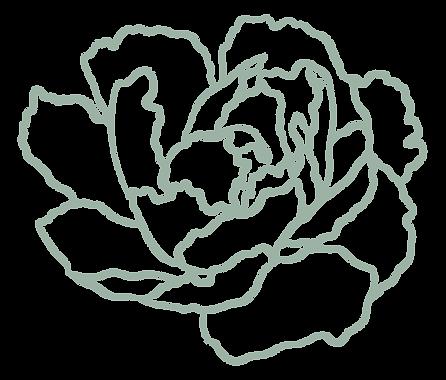 BLACK_FLOWER-01.png