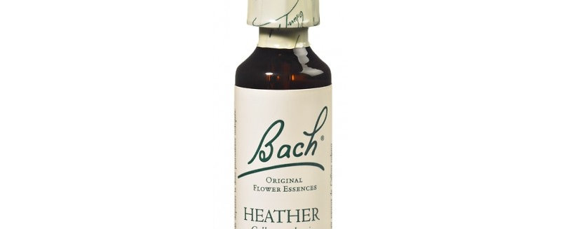 Fleur de Bach Heather n°14 - 20 ml