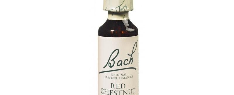 Fleur de Bach Red Chestnut n°25 - 20 ml