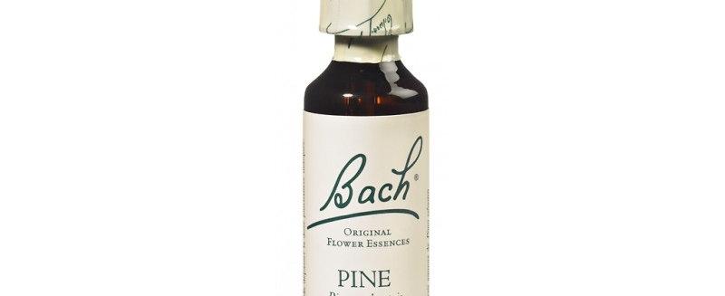 Fleur de Bach Pine n°24 - 20 ml