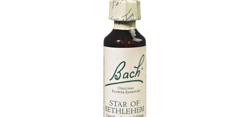 Fleur de Bach Star of Bethlehem n°29 - 20 ml