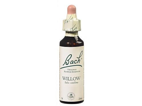 Fleur de Bach Willow n°38 - 20 ml