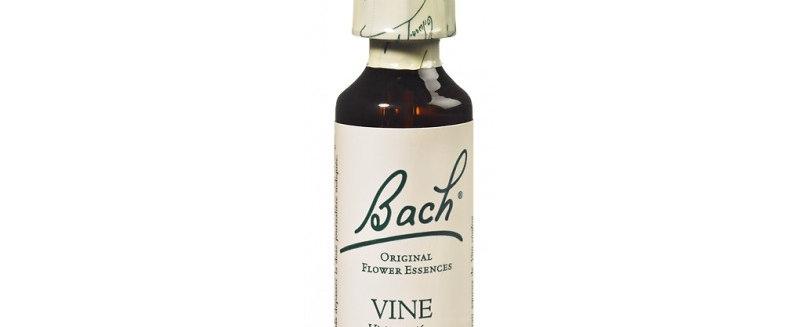 Fleur de Bach Vine n°32 - 20 ml