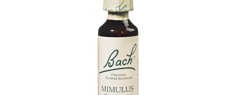 Fleur de Bach Mimulus n°20 - 20 ml