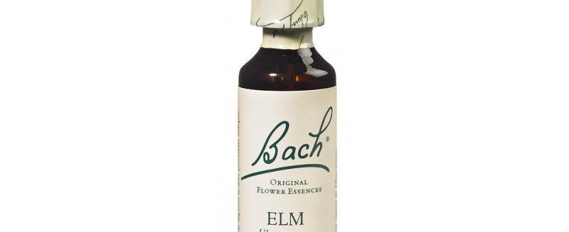 Fleur de Bach Elm n°11 - 20 ml