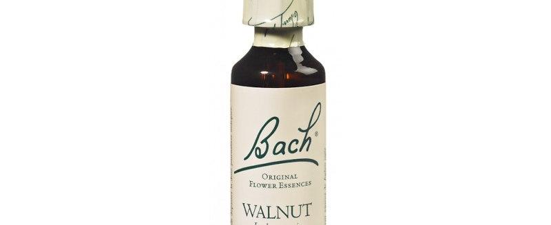 Fleur de Bach Walnut n°33 - 20 ml