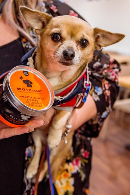 Pinks Parlour Bognor Regis Dog Ice Cream