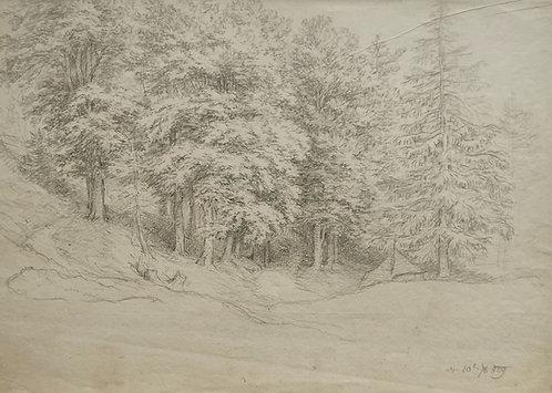 Friedrich Gauermann - Bleistiftzeichnung