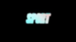 Sport relacje sportowe reportaż sportowy relacja video highlights żeglarstwo katamarany regaty relacje phantom 4 gimbal stabilizator obrazu provideos pro videos realizacje produkt video content do mediów społecznościowych