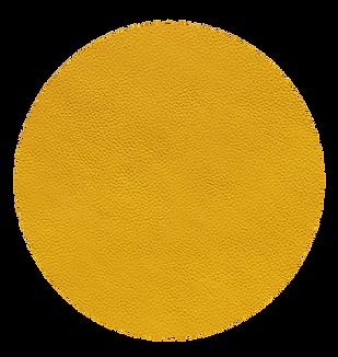 amarillo canario 340 r .png