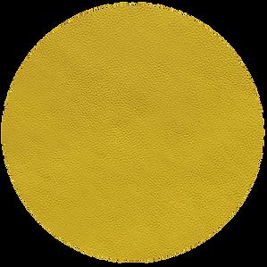 amarillo limon 344.png