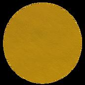 amarillo 341 bp.png