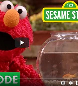 Sesame Street (2).png