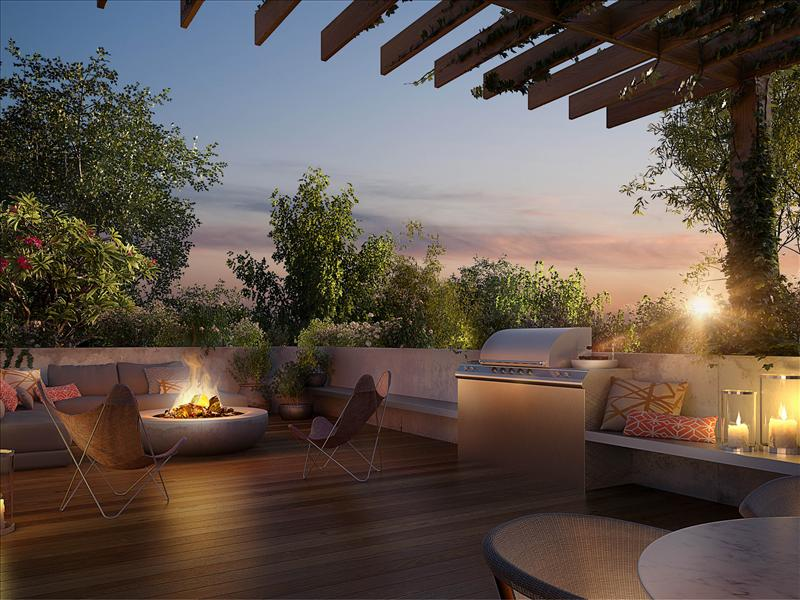Rooftop garden.jpg