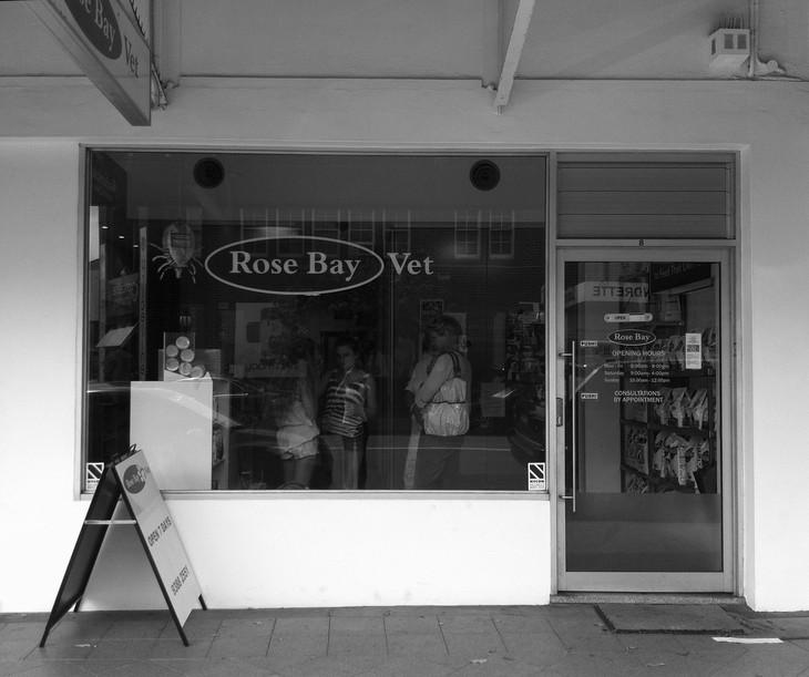 Rose Bay Vet - Under Construction