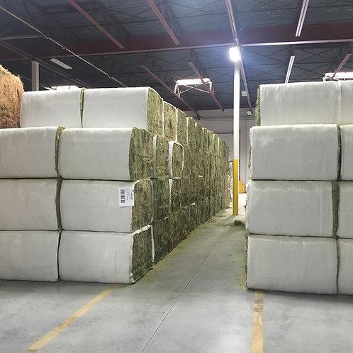 High Quality Alfafa Hay for Animal Feeding Stuff Alfalfa / Timothy / Alfalfa Hay