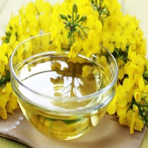 Rapeseed oil Certified Organic 100 % Pure Refined Rapeseed Oil / Canola Oil / Cr