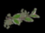 00460DCE-FF57-4AA1-A6E2-7229C0A7FC6A.png