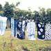The Art of Shibori