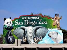 Head to the San Diego Zoo