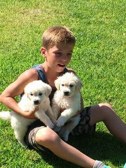 Chid with Puppies