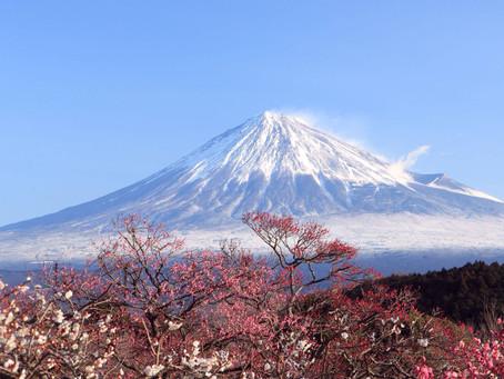 Pray for Japan - Day 7 - Kaili