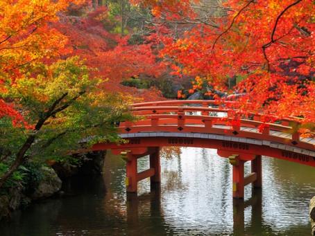Pray for Japan - Day 8 - Openness to the Gospel