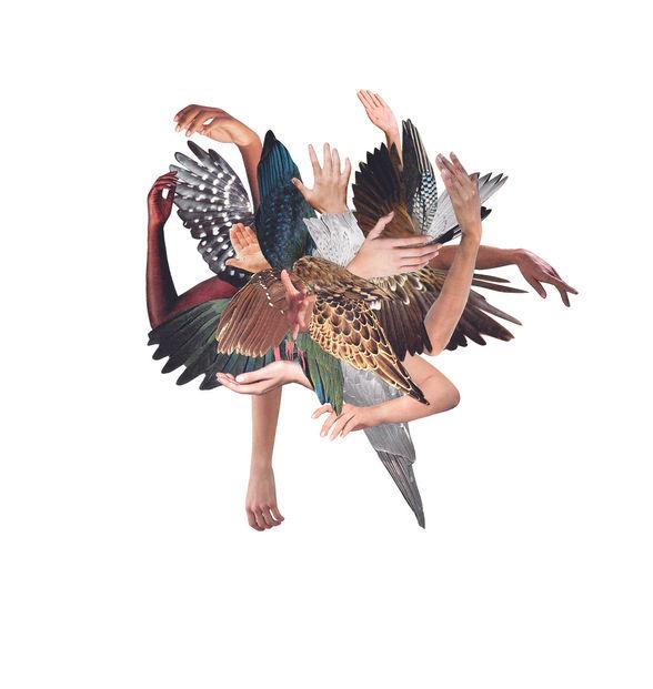 Flock!2.jpg