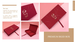 Red Packet Packaging Options (1)-01