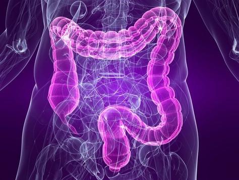 Maio Roxo alerta para o diagnóstico das doenças inflamatórias intestinais.