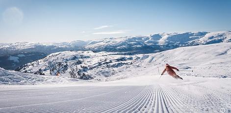 Voss ski.png