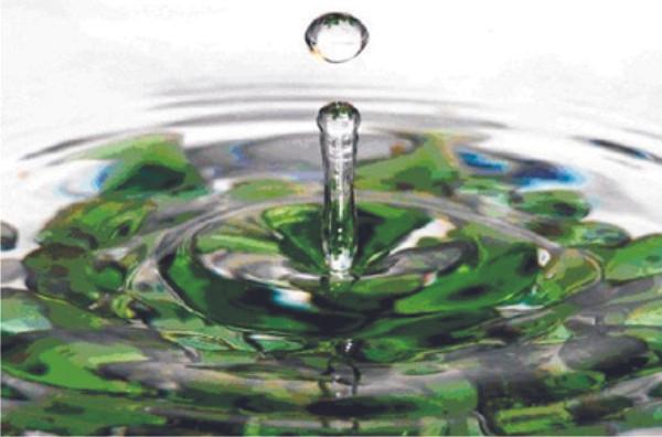 Banho de Ervas | BioAcupuntura