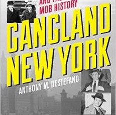 New Book: Gangland New York