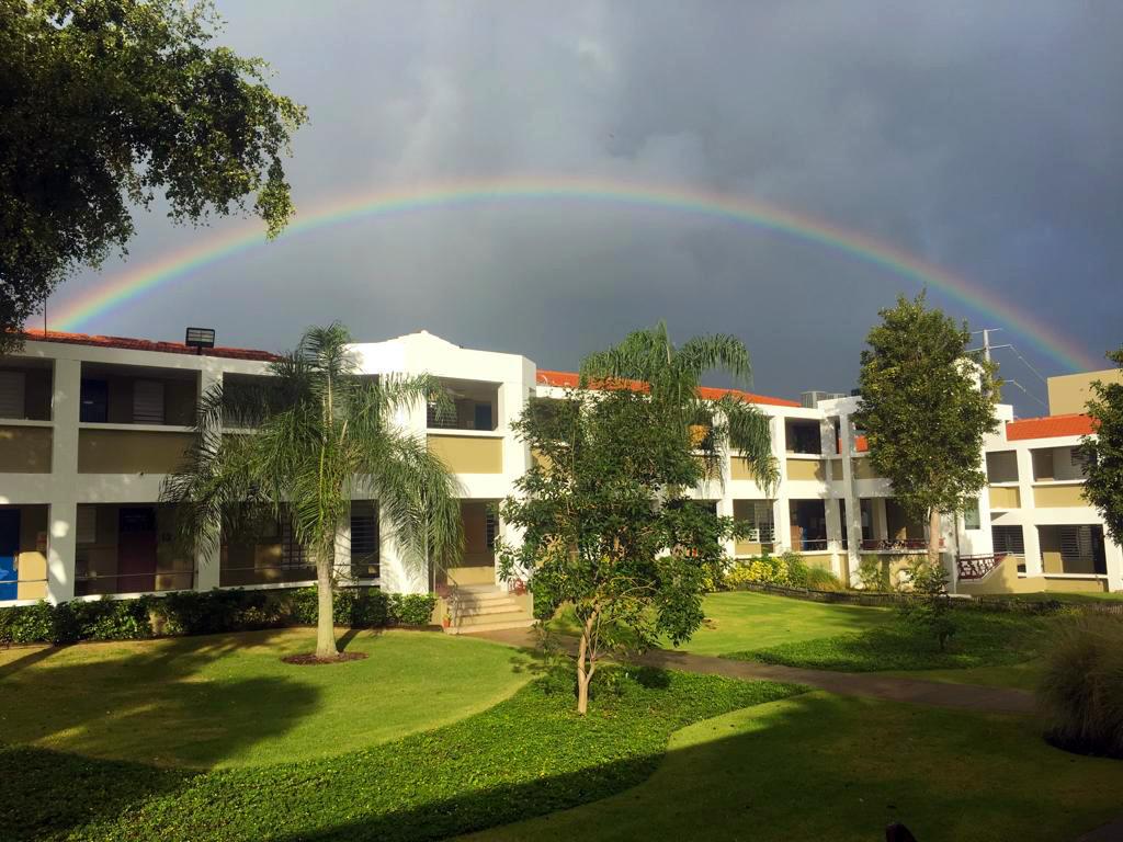 A Rainbow over elementary
