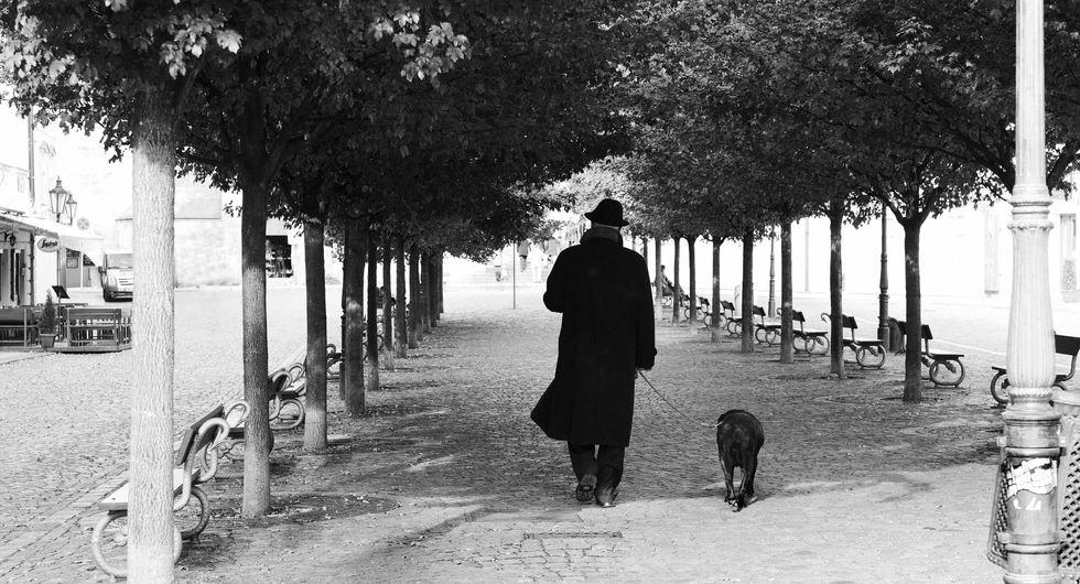 Man and Dog.jpg