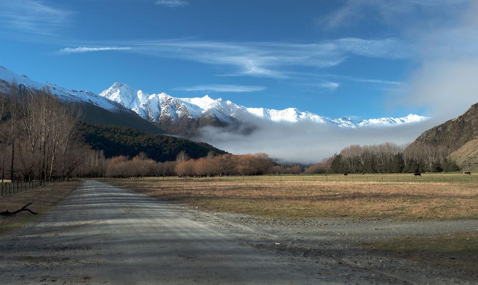 Meadowland NZ nth.jpg