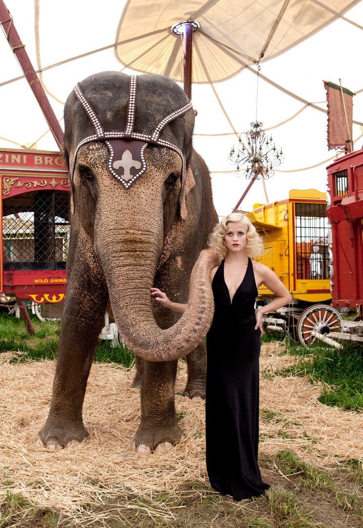 Renee Elephant.jpg